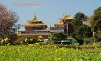 Monastery Tour Namobuddha
