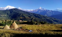 dhampus village 2 days trek