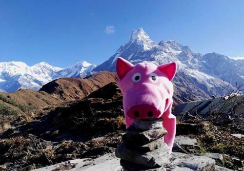 Short Mardi Himal Trekking